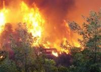 Как защитить свой дом от лесного пожара?