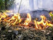 С 30 апреля в Кировской области  начался пожароопасный сезон