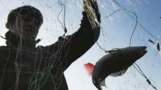 Проводятся рейды по выявлению и пресечению нарушений Правил рыболовства