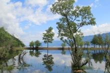 Акция «Нашим рекам и озерам – чистые берега»