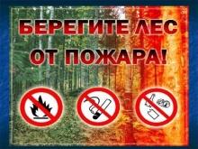 Об исполнениии законодательства в лесной отрасли