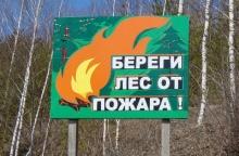 Министерство лесного хозяйства Кировской области предупреждает!