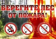 С 27 апреля 2017 года устанавливается пожароопасный сезон в лесах области