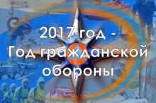 2017 год в МЧС России объявлен Годом гражданской обороны