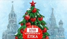 Учащиеся Унинского района посетили новогоднюю елку в Кремле