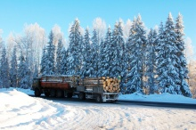 В Кировской области установлены объёмы заготовки древесины для собственных нужд граждан в 2018 году