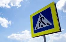 Госавтоинспекция призывает водителей и пешеходов к взаимной вежливости