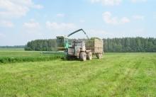 В Унинском районе приступили к заготовке кормов