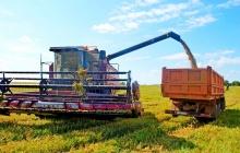 О ходе уборки урожая в сельскохозяйственных предприятиях
