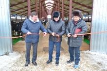 В Елгани торжественно открыли новый животноводческий комплекс