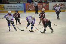 Состоялось совещание по вопросам реализации проекта ПФО по поддержке детского и юношеского хоккея «Золотая шайба»