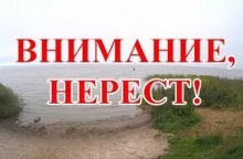 Уважаемые жители Унинского района! Уважаемые рыбаки!
