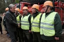 В Порошино высадили 3,5 тысячи сеянцев сосны