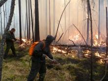 53 единицы лесопожарной техники и оборудования поступили  в Кировскую область в 2019 году