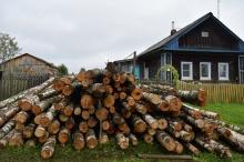 Более 11 000 договоров заключено в регионе на заготовку древесины для собственных нужд граждан в 2019 году