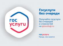 Информация о возможности получения государственных услуг в электронном виде через Единый портал предоставления государственных и муниципальных услуг