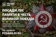 Живая память: россияне посадят деревья в честь своих ветеранов