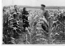 Даты и события: колхоз имени Сталина