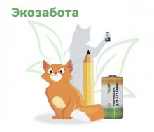 Первая партия батареек, собранных школьниками по проекту «Экозабота», доставлена на переработку