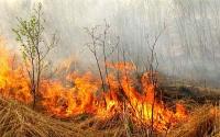 О пожарной безопасности в весенне-летний период