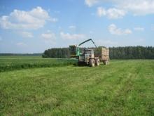 О ходе полевых работ в сельхозпредприятиях Унинского района на 11 июля 2016