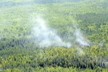 В лесах Кировской области начался пожароопасный сезон
