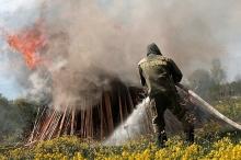 Подготовка к пожароопасному сезону в лесах - на контроле правительства Кировской области