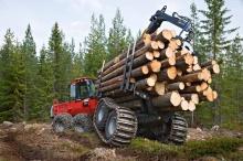О проектах изменений в Лесохозяиственные регламенты Лесничеств Кировской области
