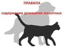 Постановлением Правительства Кировской области утверждены правила содержания и защиты домашних животных на территории региона