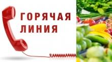 """О проведении """"Горячей линии"""" по вопросам качества и безопасности плодоовощной продукции и срокам годности"""