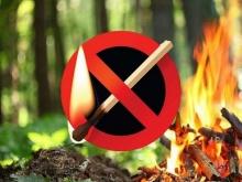 В лесах Кирoвской области введён особый противопожарный режим